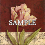Postcard Tulip